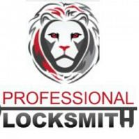 Professional Locksmith Services