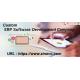 Custom ERP Software Development Services